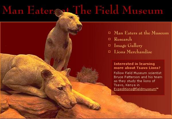 http://www.chasseurdesanglier.com/wp-content/uploads/2010/06/lions_big.jpg