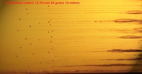 CHEVROTINES-28grains-15-metres.jpg