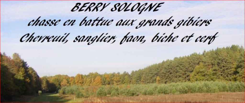 berry sologne bis