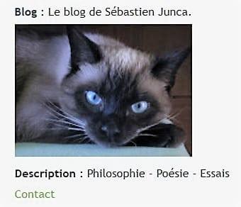 sebastien-junca